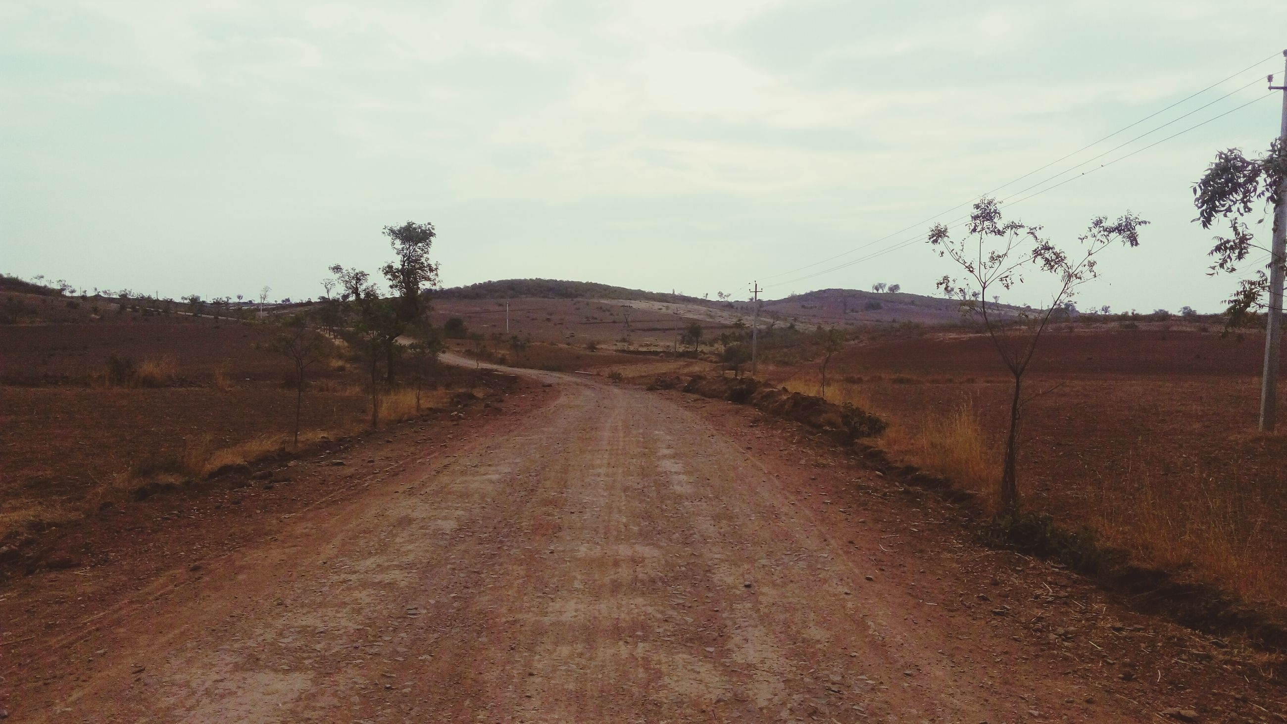 the way forward, sky, diminishing perspective, vanishing point, road, landscape, tranquility, dirt road, tranquil scene, transportation, country road, cloud - sky, nature, tree, field, empty road, cloud, scenics, non-urban scene, bare tree