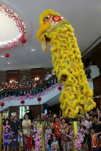 Lion Dance Lion Lion Costume Performance Acrobatics  Balance Chinese New Year CNY2017 Singapore CNY Streetphotography Sg_streetphotography Crowd Columns Singapore