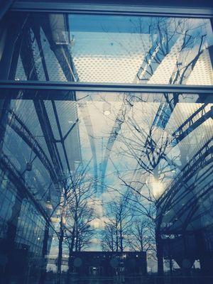 Urban Reflections Blue Glass