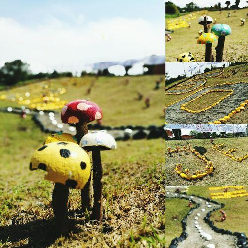 Taman mini jubli emas Selangan Brunei Temburong