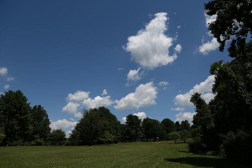 #clouds  #livinginpeace Landscape #Nature #photography