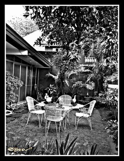 Taking Photos B&WHDR Atwork Eyeem Philippines