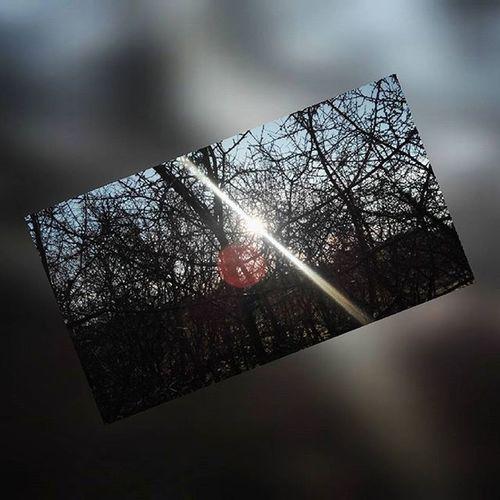 ARE WE OUT OF THE WOODS YET🎶🎶🎶🎶 @petar_deveric priznajjjhh da sam pro 😂😂 Pro Woods Nofilter Beautiful Croatia Vg Sun Ts Outofthewoods Perfect Travel Instasize Nature Sassy Taylorswift Swifte OFC 😂👌👊
