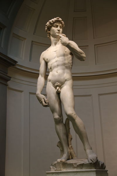 David Florence Italy Accademia Architecture Art And Craft Built Structure Day Front View Full Length Human Representation Indoors  Low Angle View Male Likeness Michelangelo's David One Person Sculpture Standing Statue Young Adult