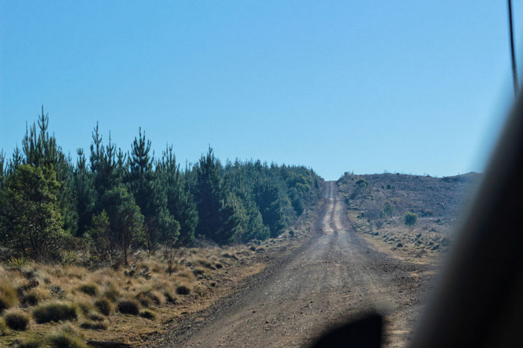 Panoramic view of road amidst trees against clear blue sky