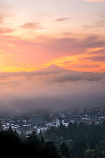Portland Oregon Sunset Sky Nature Beauty In Nature Tree Architecture Building Exterior Cloud - Sky Scenics Built Structure No People Cityscape Mountain Outdoors Tranquility City Day