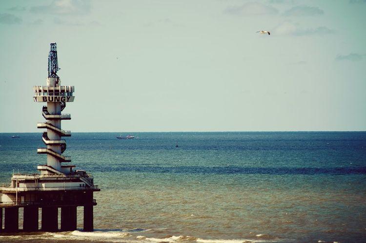 Vintage 1 Filter Sky Sea Ships Birds View Water Colors EyeEm Best Shots Eye4photography  Through My Eyes