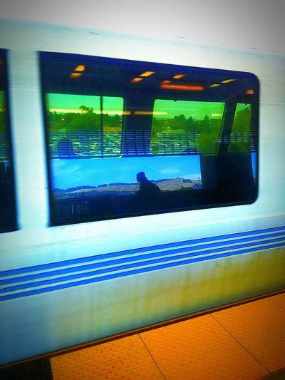My Commute Bart Train Bart Rider Bart Station Bicyclist Reflections In The Glass Windows Tinted Glass Public Transportation Subway Station Transportation Subway Photography Commuters Subway Train Subway Ride Subway Photography Commuters transportation taking