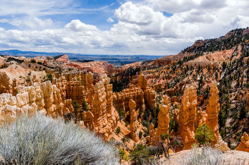 Beauty In Nature Bryce Canyon National Park Canyon Cloud - Sky Day Geology Nature No People Outdoors Physical Geography Rock - Object Rock Formation Rock Hoodoo Scenics Sky Travel Destinations