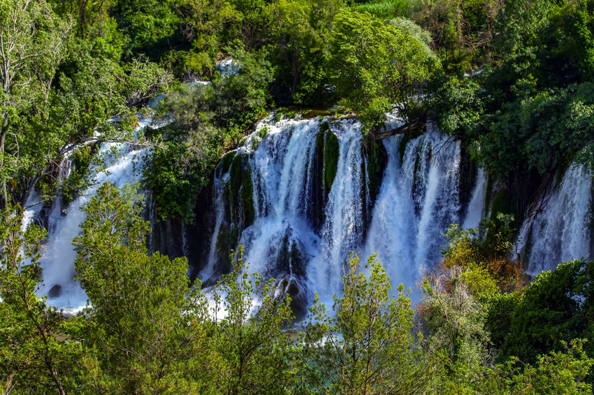 Beauty In Nature Day Forest Green Color Growth Kravica, Bosnia & Herzegovina Landscape Lush Foliage Motion Nature No People Outdoors Plant River Scenics Tree Water Water_collection Waterfall