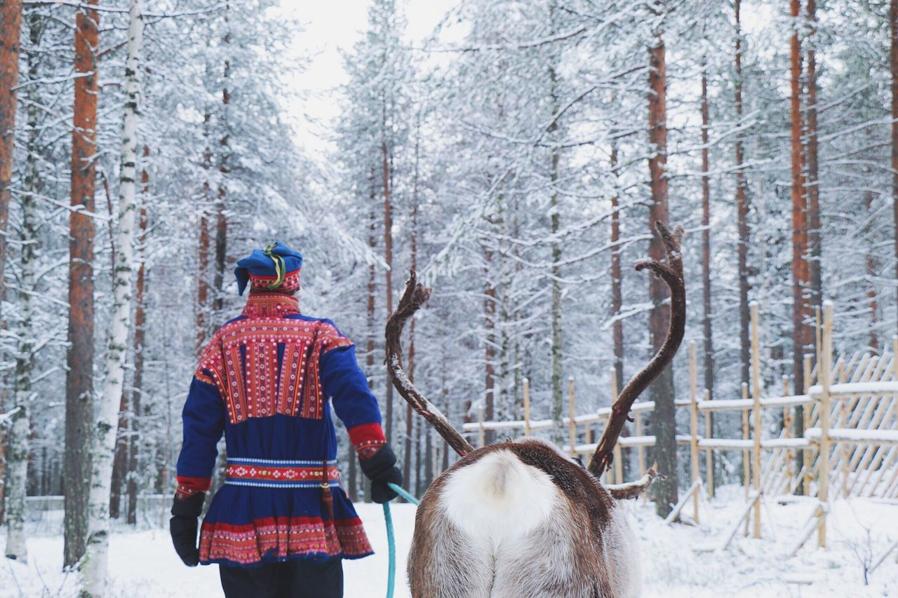 Rear View Of Man Wearing Traditional Clothing Walking With Stag On Field Amidst Bare Trees During Winter