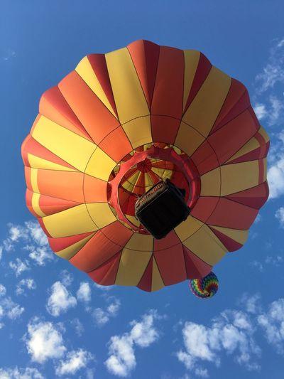 Coyote Balloon