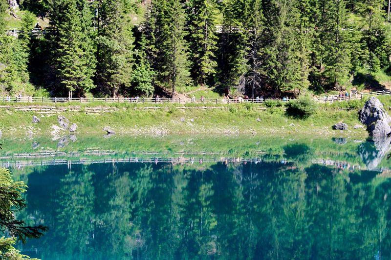 Water Reflections 🔮 Lago Di Carezza Bolzano South Tyrol Dolomites Italy Europe Lago Di Carezza Trentino Dolomiti Trentino Alto Adige Carezza Lake Lake View Mirror Crystal Clear UNESCO World Heritage Site Tree Green Color Tranquil Scene Beauty In Nature Travel Alps ドロミテ イタリア ヨーロッパ アルプス 世界遺産