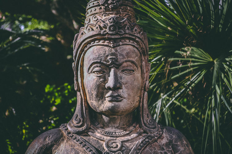 Close-up of buddha statue against trees