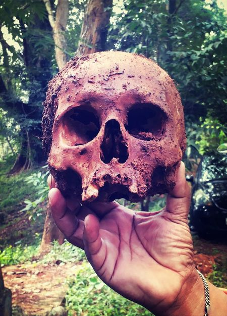 Skull Cemetery Life And Death