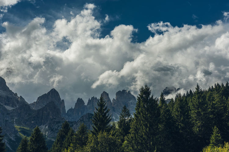 Dolomites, Italy Beauty In Nature Cloud - Sky Day Forest Mountain Nature No People Outdoors Scenics Sky Tree