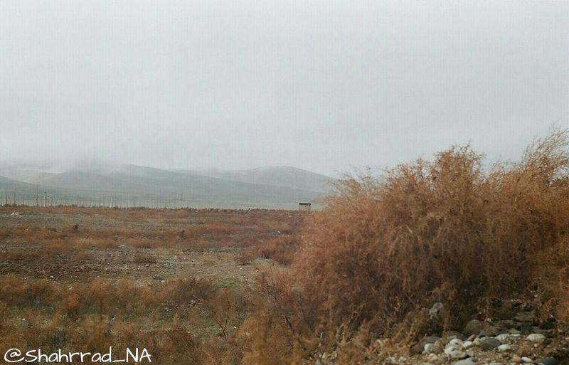 Art هنر Photo Photography Shahrrad_NA Mountain Fog Foggy