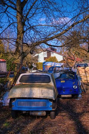 Time Passes by...... Bavarian Landscape Bill Ryker Cars DDR EyeEm Gallery Lost in the Landscape MA Eibl Trabant Bare Tree Blue Car Branch Car Carporn Carsofeyeem Day Eye4photography  Land Vehicle Missing Pieces No People Old Outdoors Scrapyard Time Passes By Transportation Tree