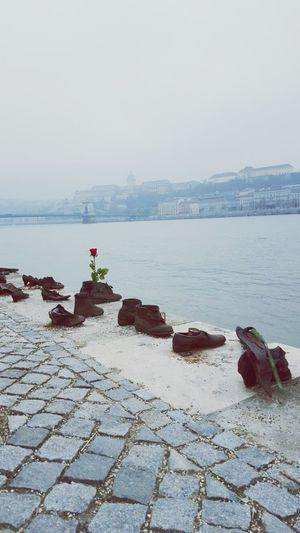 Danube River Budapest Holocaust Memorial Shoes Streetphotography River