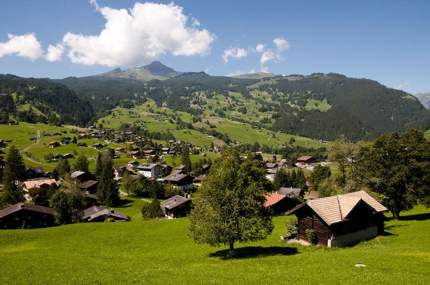 Gimmelwald Suisse  Alps Jungfrau Switzerland Town