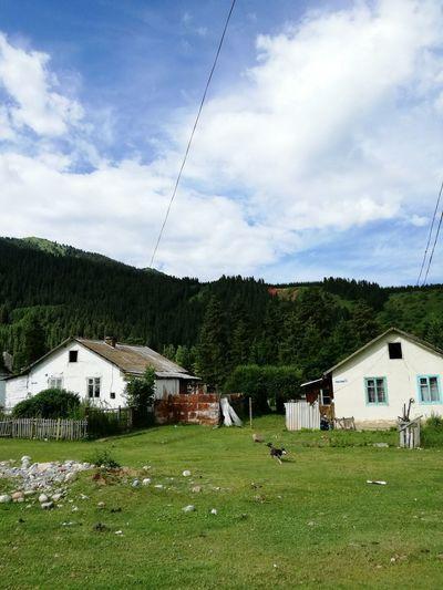 Houses on field against cloudy sky