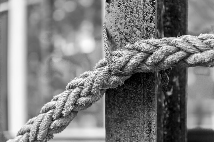 Close-up of rope tied up on pole