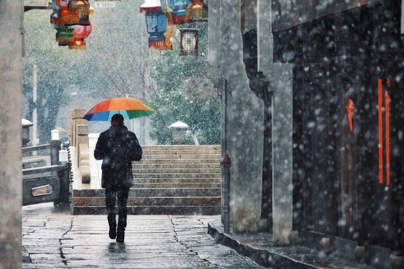Rear view of person walking with umbrella during snowfall