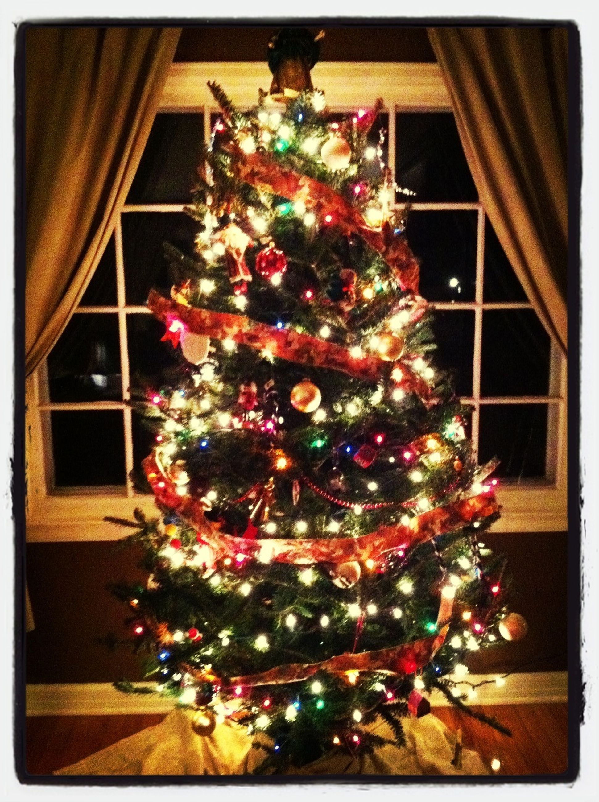 decoration, celebration, christmas, christmas decoration, christmas tree, indoors, tradition, hanging, illuminated, christmas lights, decor, flower, christmas ornament, transfer print, architecture, built structure, holiday - event, cultures, auto post production filter, low angle view