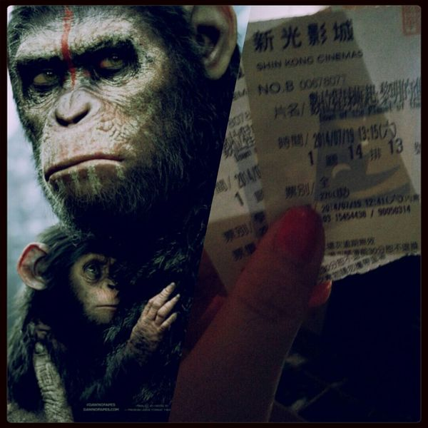 Yesterday I was clever, so I wanted to change the world. Today I am wise, so I am changing myself. 或許有些事 我們要懂得原諒 Dawn Of The Planet Of The Apes