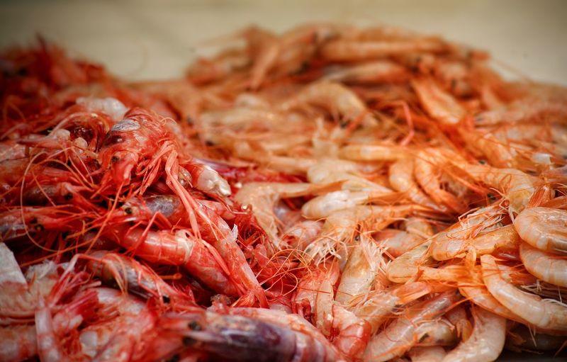 Shrimps Shrimps Market Fish Food Red Color Food Stories Colour Your Horizn
