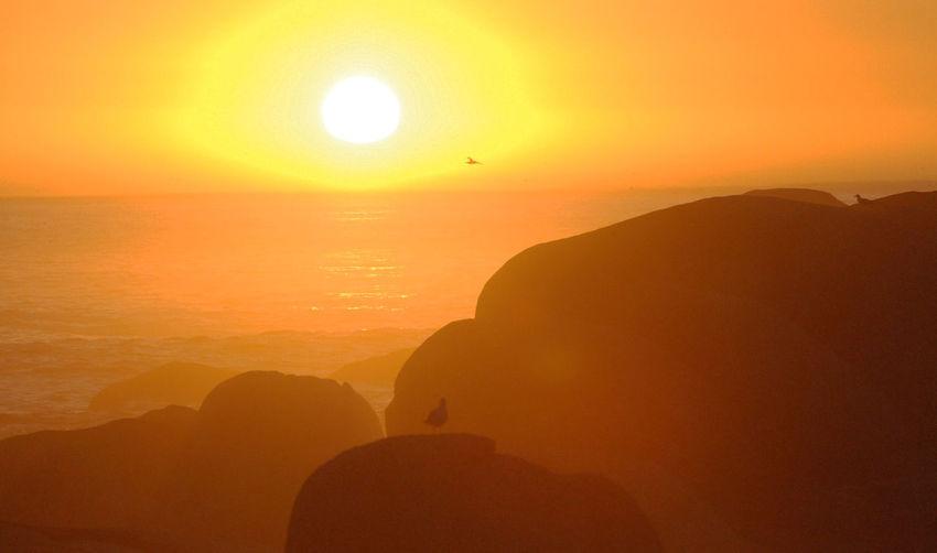 Astronomy Mountain Sunset Beauty Cliff Eyesight Sun Fog Silhouette Gold Colored