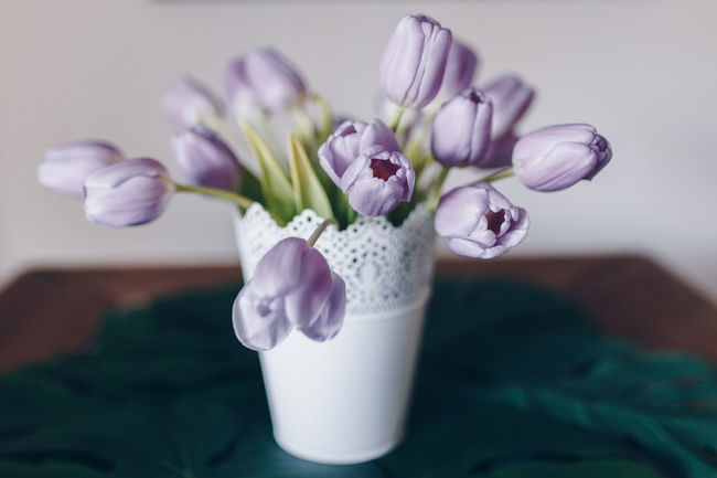 Tulips Beauty In Nature Close-up Day Drinking Glass Flower Flower Bouquet  Flower Head Flowers Flowers On Table Fragility Freshness Indoors  Nature No People Petal Purple Table Tulip Tulips Flowers Tulips🌷 Vase The Still Life Photographer - 2018 EyeEm Awards