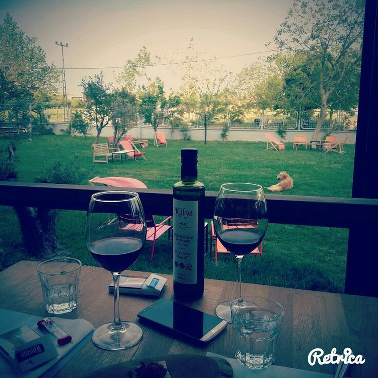 table, wineglass, wine, tree, alcohol, drinking glass, food and drink, drink, day, red wine, outdoors, grass, no people, sky, nature, freshness, close-up