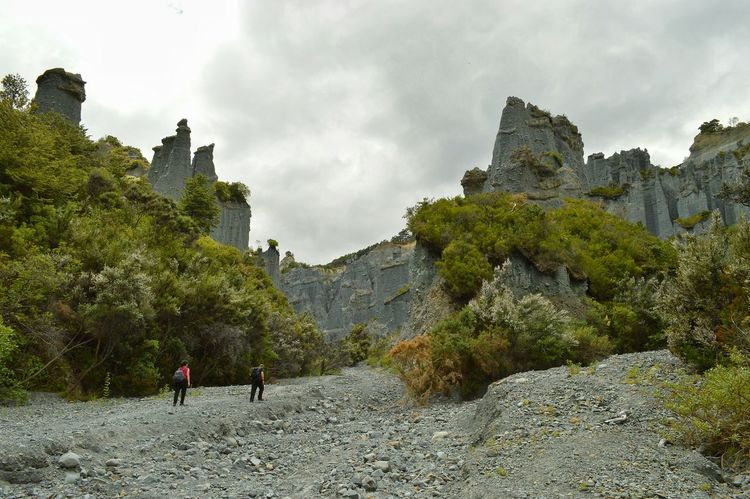 I might post a series of shots taken at the Putangirua pinnacles. A real hidden gem of a location in N.Z. There is really only two ways to view these natural wonders. . . walk the loop track over the hills or as seen here climb the dry river bed. ( and I do mean climb it's quite a slope) I was advised to do the river bed for the best shots . . . but ended up doing both. . . advice was spot on and the other option was amazing too. . . loved it all. Can see the slope here with some other keen trampers we past coming back down 😊😊👍👍 Adventure Time Hiking Nature_collection Eye4photography  Beautiful Nature Check This Out Getting Inspired EyeEm Nature Lover Kiwi Clicker New Zealand Scenery Taking Photos Walking Around EyeEm Best Shots Hello World Nature Landscape Great View Having Fun EyeEm Best Edits Lookingup Beautiful Day Rock Formation Great Outdoors Nature Photography Natural Beauty