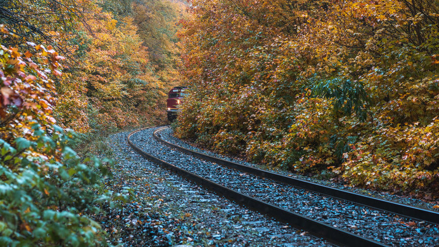 Fall Autumn Color Season  Leaf Travel Mountain Tree Railroad Track High Angle View Train Track Rail Transportation Railroad Track