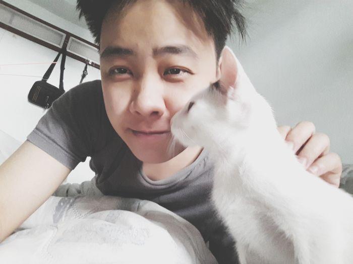 Cat♡ Cats Of