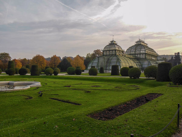 Austria Palmenhaus Vienna Architecture Building Exterior Built Structure Cloud - Sky Day Garden Grass Nature No People Outdoors Palm House Sky Travel Destinations Tree