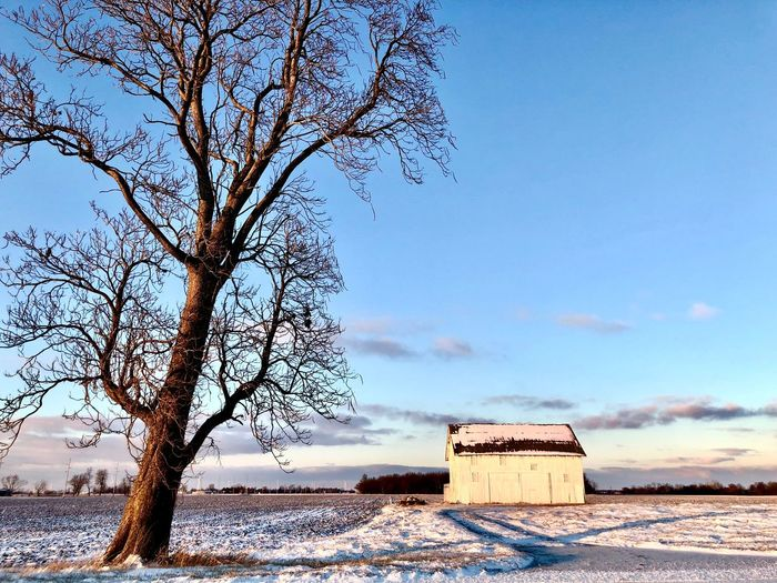 Shades of Winter Snow Sunset Cold Temperature Nature Built Structure Bare Tree Tree No People Beauty In Nature