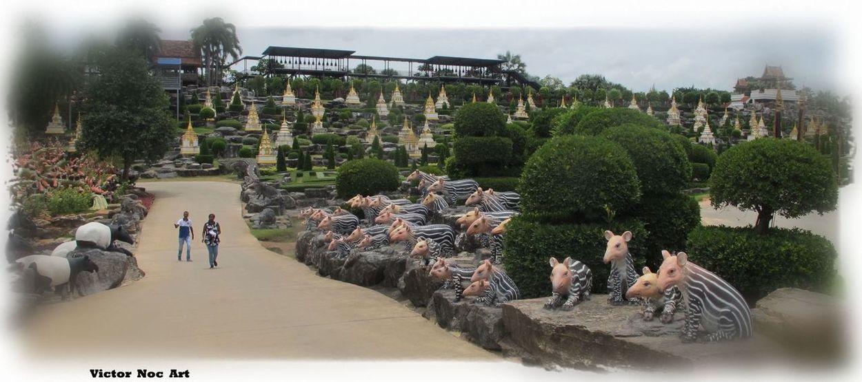Victor Noc Art 🎱 Nong Nooch Tropical Bothanical Garden Thailandia 2016 Pattaya City VictorNocArt VicNocArt Pattaya City Vittorio Nocente