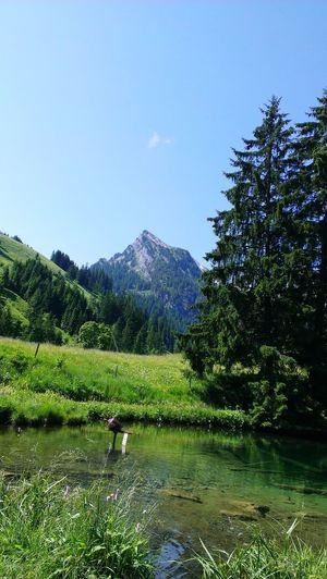 Mountain, Swiss