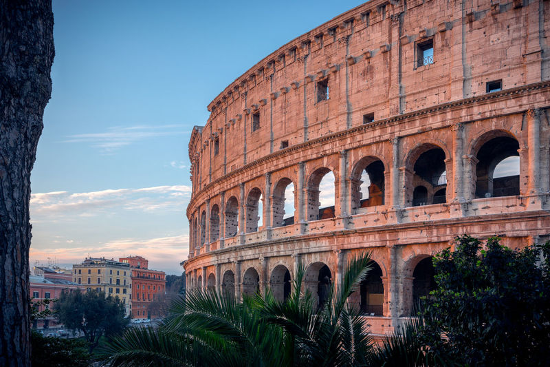 The Colosseum in Rome during Sunrise in Winter. Colosseum Rome Italy Colosseum Rome Rome Winter Ancient Ancient Civilization Architecture Building Exterior Built Structure Colosseum Day History Italy No People Old Ruin Outdoors Sky Sunrise Tourism Travel Destinations Tree