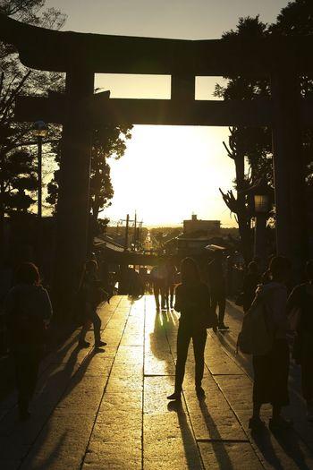 Landscape Sunset 宮地嶽神社 光の道