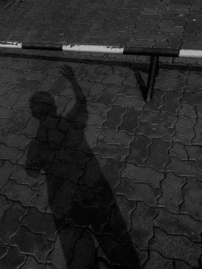 Black & White Shades Of Grey Shadows & Lights Black And White Black And White Friday Blackandwhite Day Don't Exit Sign High Angle View Nature No People Outdoors Shadow Shadows