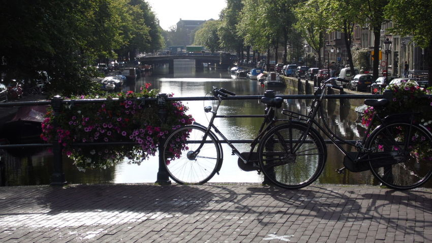 All_shots Amsterdam Bike City Cityscapes Landscape Like Nature Nature_collection Photo Photography Pic