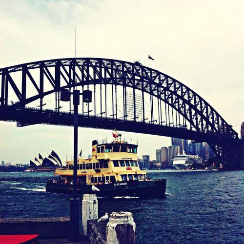 The Harbour Deck Sydney Harbour Bridge Enjoying The View Chilling