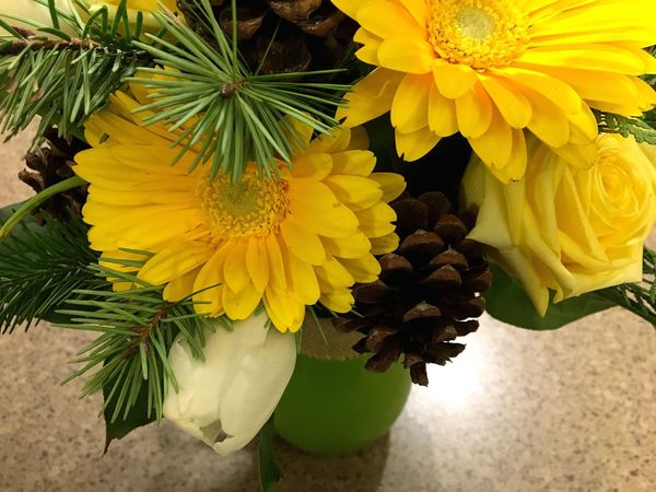 Yellow Gerbera Gerbera White Tulips Vase Green Pinecone Tulips Yellow Rose Rosé Rose - Flower Flower Beauty In Nature Petal Freshness Yellow Fragility Nature Flower Head Growth Close-up No People Plant Leaf Blooming