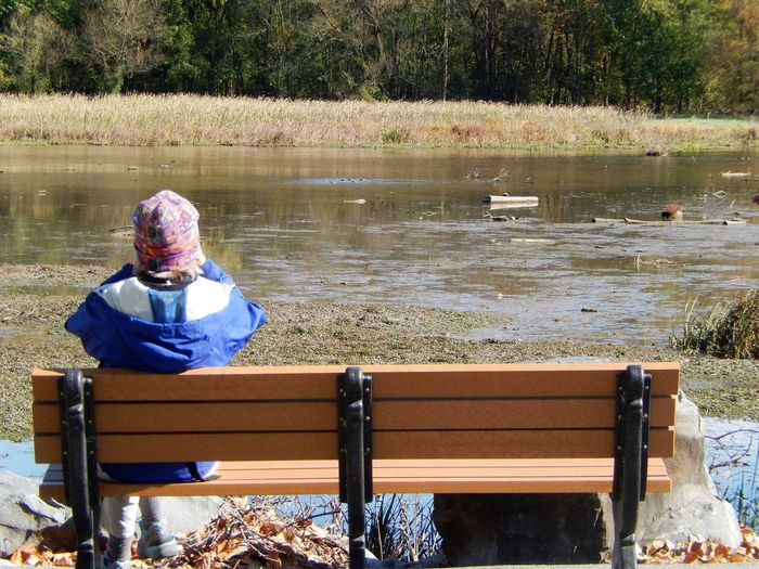 Sitting Water Bench Who What Where Outdoors Nature Rear View Leisure Activity EyeEm Best Shots - Landscape Landscapes Wetlands Tranquility EyeEm Nature Lover Bird Watching EyeEm Gallery EyeEm Eyeem Collection Autumn Eyeem Market Eyeem Photography Pennsylvania light and reflection Snap a Stranger Fort Hunter Park What Who Where Chance Encounters Chance Encounter waiting game Live For The Story The Great Outdoors - 2017 EyeEm Awards This Is Aging