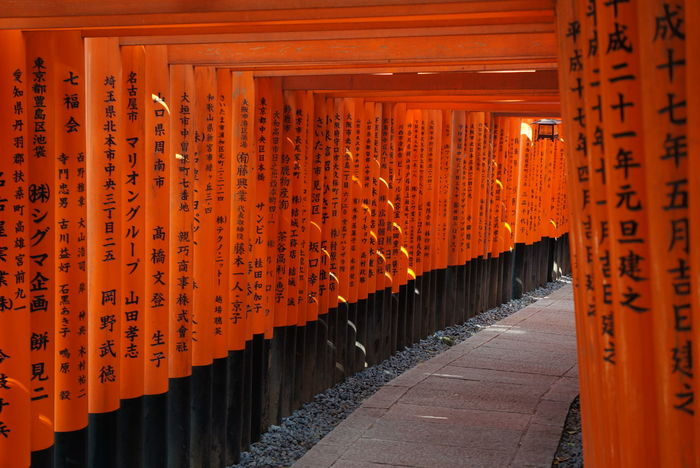 Inari Shrine Architectural Column Architecture Communication Day Hanging In A Row Lantern No People Orange Color Outdoors Place Of Worship Religion Shrine Spirituality Text The Way Forward Travel Destinations