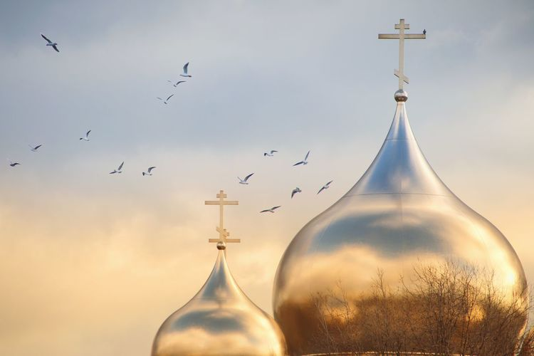 Low angle view of birds flying over church against sky