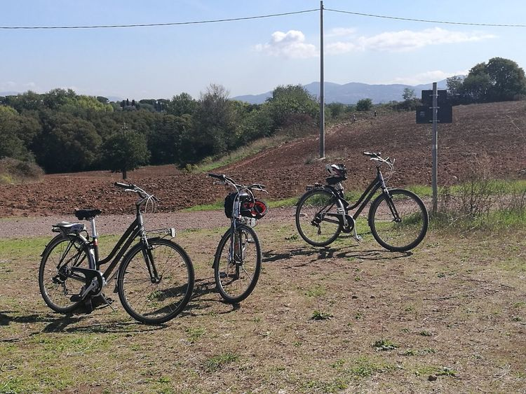 Bicycles in the Roman countryside in Italy. Transportation Day Mode Of Transport Stationary Outdoors No People Sky Tree Tree Bicycles Countryside Parking Cycling Bicycle Basket Riding Pedal Agricultural Field
